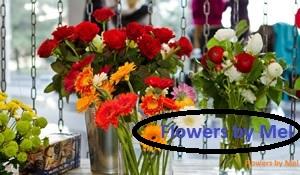 Boomerang Flowers